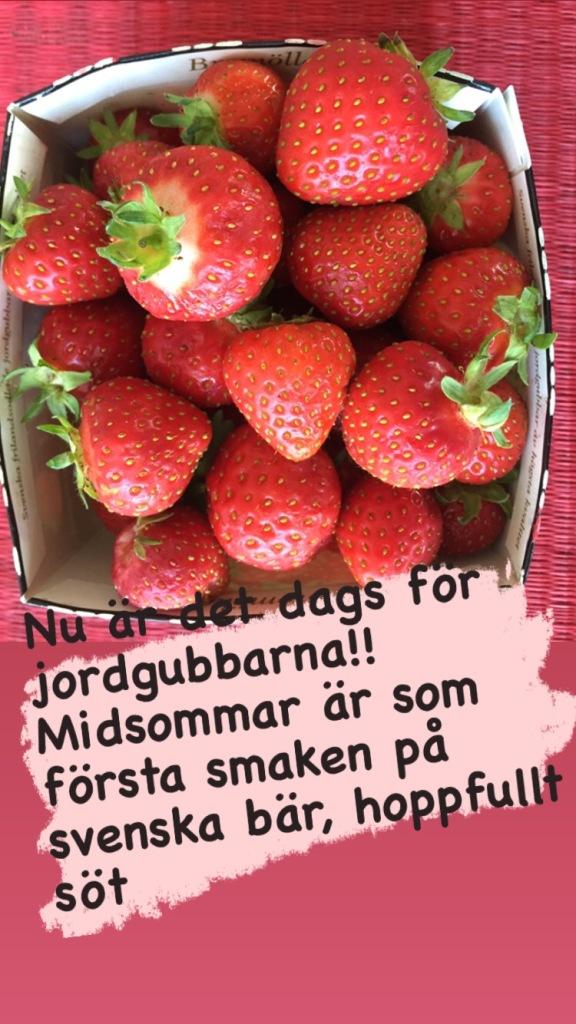 Första svenska jordgubbarna vid midsommar är ändå rätt magiskt